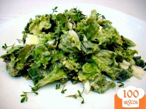 Фото рецепта: «Салат из листового салата»
