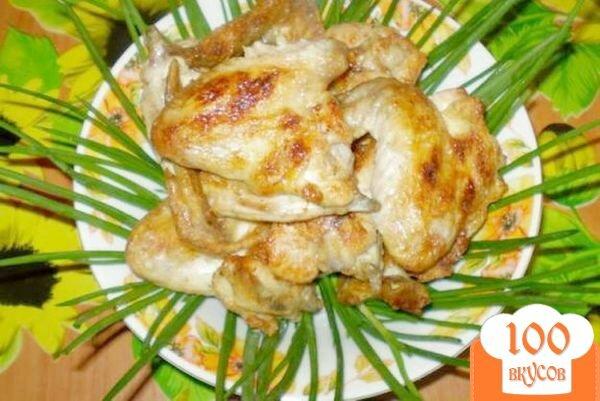 Фото рецепта: «Шашлык куриный на кефире с чесноком»
