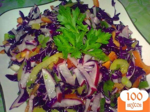 салаты с краснокочанной капустой рецепты