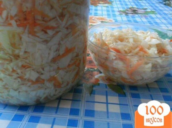 Маринованная капуста пошаговые рецепты с