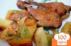 Фото рецепта: «Куриные голени запеченные с картофелем»