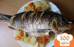 Фото рецепта: «Карп, запеченный в духовке с овощами»