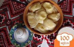 Фото рецепта: «Вареники с сыром»