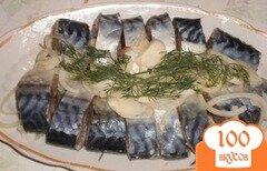 Фото рецепта: «Соленая скумбрия»
