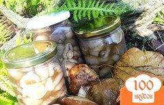 Фото рецепта: «Маринованные грибы»