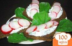 Фото рецепта: «Горячие бородинские тосты с редисом»