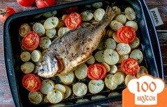 Фото рецепта: «Дорада с картофелем и помидорами»