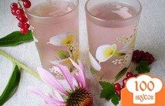 Фото рецепта: «Напиток из красной смородины и листьев эхинацеи пурпурной»