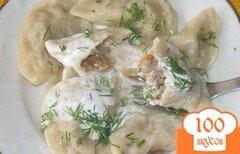 Фото рецепта: «Вареники с капустой и мясом»