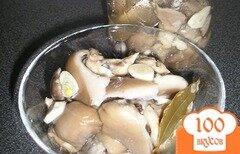 Фото рецепта: «Вешенки, маринованные на закуску»