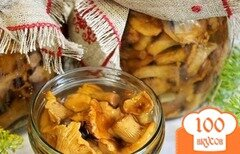 Фото рецепта: «Лисички маринованные соленые»