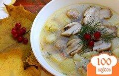 Фото рецепта: «Суп из белых грибов на мясном бульоне»