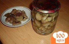 Фото рецепта: «Соленые маслята на зиму»