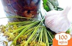 Фото рецепта: «Волнушки в маринаде»