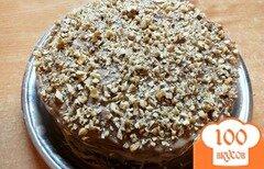 Фото рецепта: «Медовик день-ночь с орехами»