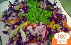 Фото рецепта: «Салат из краснокочанной капусты с редисом»