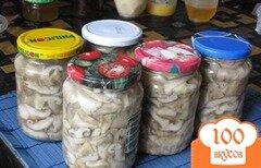 Фото рецепта: «Соленые грузди в банках на зиму»