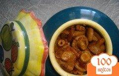 Фото рецепта: «Волнушки на зиму»
