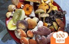 Фото рецепта: «Суп из лесных грибов»