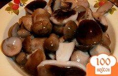 Фото рецепта: «Жареные белые грибы на зиму»
