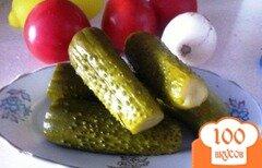 Фото рецепта: «Малосольные огрурцы»