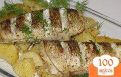 Фото рецепта: «Нототения на картофельной подушке»