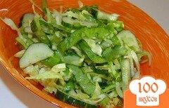 Фото рецепта: «Салат из молодой капусты с листьями салата»