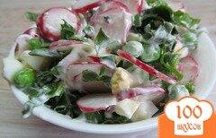 Фото рецепта: «Салат из редиса с щавелем»
