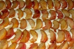 «Пирог с творогом и свежими персиками» - приготовления блюда - шаг 4