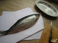 «Селедка с картошкой» - приготовления блюда - шаг 1