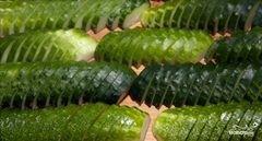 «Салат из огурцов на зиму» - приготовления блюда - шаг 2