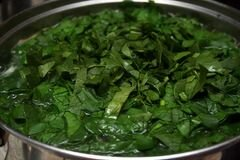 «Суп из шпината» - приготовления блюда - шаг 5