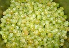 «Натуральный виноградный сок из соковарки» - приготовления блюда - шаг 2