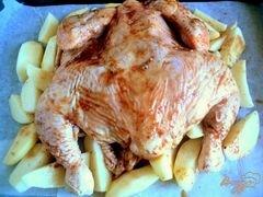 Курица в духовке на противне рецепт пошагово в